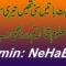 Hum Ne Bhut Batein Suni thein
